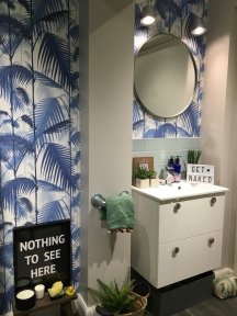"""Liznylon bathroom 'Nothing to See Here"""""""