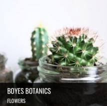 Boyes_Botanics