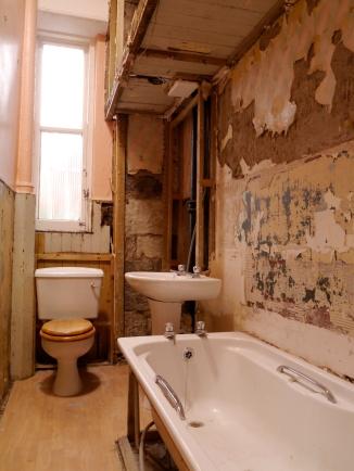 Liznylon_during_bathroom_renovation_with_drop_ceiling