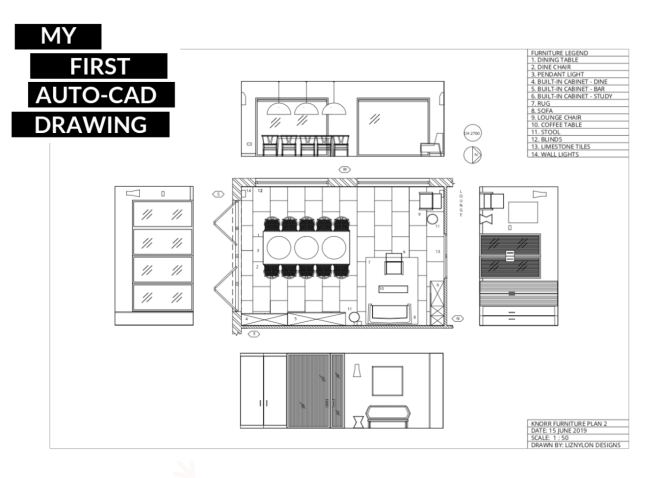 Liznylon_Auto_CAD_first_furniture_plan_and_elevations