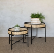Rose_and_Grey_lizzie_set_of_two_rattan_iron_side_tables